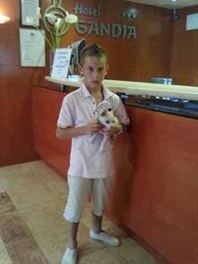Perro Pequeño en Hotel Gandia